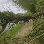 Protect your home from storms
